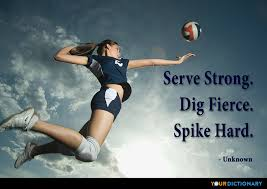 Volleyball Quotes Delectable Volleyball Quotes
