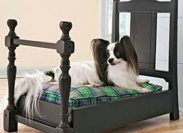 repurpose furniture dog. Chair Into Dog Bed Repurpose Me Pinterest Beds, And Furniture