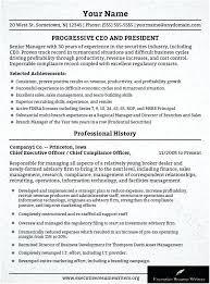 Information Technology Director Resume Thrifdecorblog Com