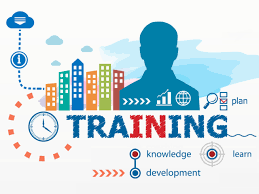 What Is Remote Training And How Does Remote Training Work