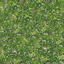 870 lawn seamless texture by zooboing photoshop resource collected psddudecom from tall grass seamless texture s29 tall