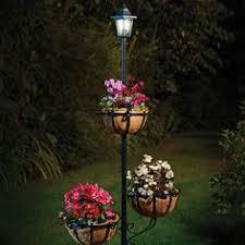 homestore more backyard pinterest ball lights solar and rose