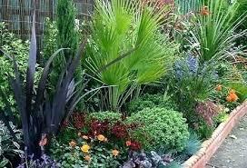 cheap garden edging. Full Size Of Interior:metal Garden Edging Ideas Elegant Border Cheap 21
