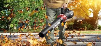 cool leaf blower