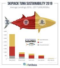 Skipjack Tuna Fishchoice
