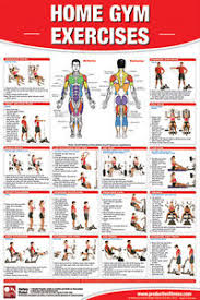 Details About Home Gym Exercises Professional Fitness Gym Wall Chart Poster
