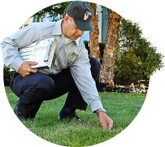lawn maintenance orlando. Exellent Orlando Professional Lawn Care Services In Orlando To Maintenance A