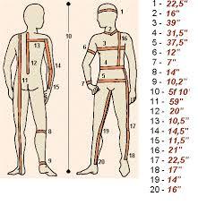 Bodybuilding Body Measurement Chart Body Measurements