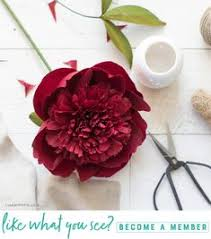 Paper Crafted Flowers 223 Best Crepe Paper Flowers Images In 2019 Paper Flowers Diy
