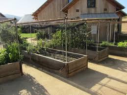 Kitchen Garden Trough Kitchen Garden Trough Ideas Kitchen Garden Trough Planter Ideas