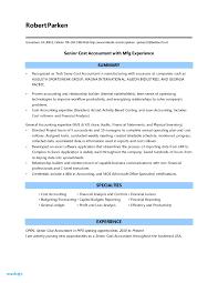 Accountant Resume Examples Resume