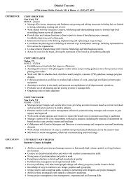 Sample Copy Of Resumes Copy Resume Samples Velvet Jobs