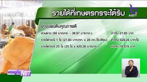 จ่ายเงินประกันรายได้งวดแรกให้ชาวสวนยาง ข่าวเที่ยง วันที่ 1 พฤศจิกายน 2562  #NBT2HD - YouTube