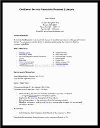 resume objective examples for customer service resume objective examples for customer service 4822