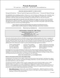 Business Consultant Sample Resume Management Consulting Resume Example For Executive Business 5