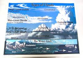 Types Of Clouds Chartlet Carson Dellosa 009830 Rainbow