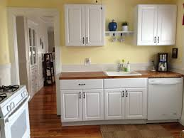 diy kitchen cabinets ikea vs home depot