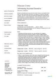 executive cover letter for resume sample executive resume advertising account executive resume sample