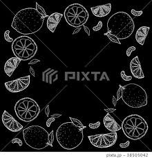 レモンとオレンジ手描きの線画のイラスト素材 38505042 Pixta