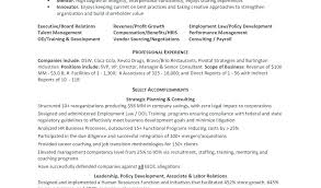 Examples Or Resumes Shumpeioe Stunning Career Ambitions Examples Resume