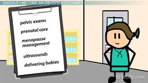 Ob Gyn Medical Assistant Salary How To Become An Obgyn Assistant