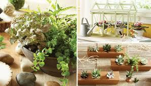 indoor gardening. Indoor Gardening Projects