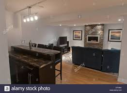 basement remodeling companies. General Living Room Ideas Basement Remodeling Companies Decorating Themes Simply Basements Company Fabulous D