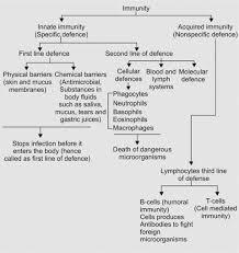 Humoral Immunity Flow Chart Jaypeedigital Ebook Reader