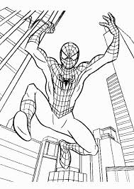 Small Picture 8 best spider man images on Pinterest Adult coloring Coloring