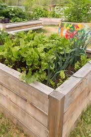 building raised beds from wood to grow