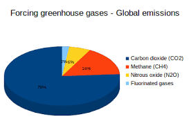 Figure 1 Greenhouse gases In 2010 carbon dioxide contributed 76 of  global forcing greenhouse gas