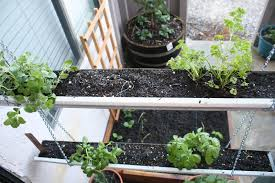 Hydroponic Kitchen Herb Garden 13 Creative And Innovative Rain Gutter Garden Ideas The Self