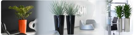 office plant displays. Retail Plant Displays Office U