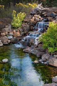 A beautiful backyard pond on a secluded lot. A large waterfall tumbles into  the pond