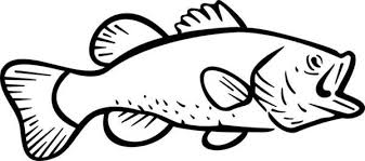 Small Picture Fish Coloring Pages Outline Coloring Pages