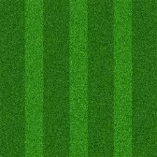 fake grass texture. Grass Texture Fake