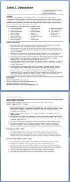 sample resume for experienced it professional best online sample resume for experienced it professional 3 sample resume for experienced it professionals electrical