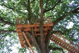 kids tree house. Exellent Tree To Kids Tree House
