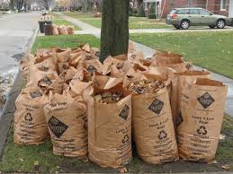 Best Yard Waste Bags Reviews 2018: Garden Waste Removal Bins