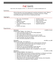 Dishwasher: Resume Example. Create my Resume