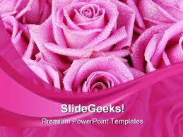 Pink Rose Abstract Beauty Powerpoint Templates And Powerpoint