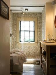 bathroom windows inside shower. Window For Bathroom Shower Beach Style 3 4 Mosaic Tile And Beige Idea In Windows Inside R