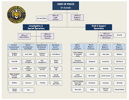 Law Enforcement Hierarchy Chart Organization