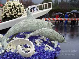 Rose Bowl Float Decorating Rules Will It Rain On My Rose Parade The Rules No Sundays Water 82