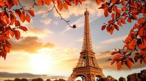 1080x1920 eiffel tower in autumn france