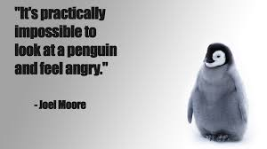 Enjoy reading and share 7 famous quotes about penguin love with everyone. Cute Penguin Love Quotes Thousands Of Inspiration Quotes About Love And Life