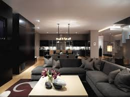 Living Room Contemporary Brilliant Living Room Contemporary Decorating Ideas Pictures Gallery