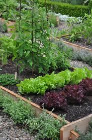 Robins Kitchen Garden City 17 Best Images About Herb Kitchen Gardens On Pinterest Gardens