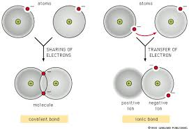 Ionic And Covalent Bonds Venn Diagram Similarities Between Covalent And Ionic Bonds