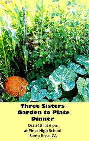 three sisters garden to plate dinner